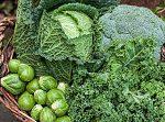 インフルやノロを予防する食材ランキング